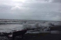 Murrays Bay, King Tide 1.2.18