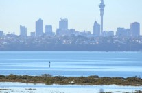Te Atatu Peninsula, King Tide 17 July 2014