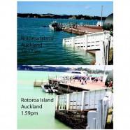 Rotoroa Island King Tide 03032014