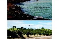 Rotoroa Island, King Tide 03032014