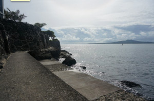 North of Takapuna beach near Thornes Beach 10.00am Takapuna seawall