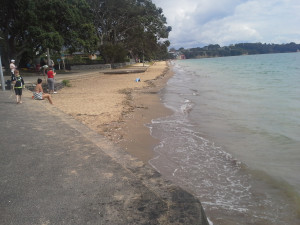 Cheltenham Beach (South end) 10.04am