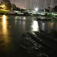 Little Shoal Bay, King Tide 24.6.17