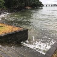 Murrays Bay, King Tide 29.4.17
