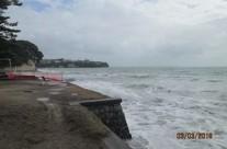 Mairangi Bay, King Tide 3.3.18