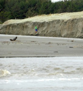 Dunes at the Waitohu Stream mouth in 2014 following a high-tide storm surge event and movement of the stream mouth. Photo: Sue McIntosh.
