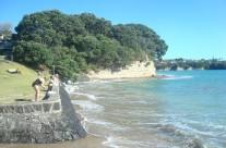 Mairangi Bay, Auckland King Tide 02022014