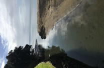 Rothesay Bay, King Tide, 3.8.19