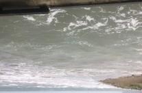 Long Bay, King Tide 30.9.19