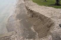 Howick Beach, King Tide 30.10.15