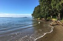 Browns Bay, King Tide 28.5.17