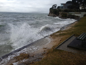 Rothesay Bay foreshore 13.9.14
