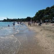 Kohimarama Beach, Auckland King Tide 02022014