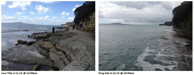 Next King Tide King Tides Auckland