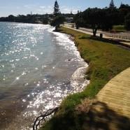 Omana Beach, Auckland King Tide 02022014