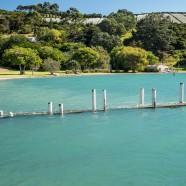 Orapiu, Waiheke, Auckland King Tide 02022014