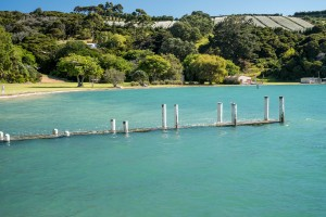 Orapiu jetty sinks below the King Tide at Orapiu, Waiheke Island, 02 February 2014. Photo Richard Wedekind