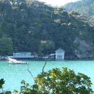 Kawau Island, Auckland King Tide 01022014