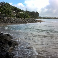 Campbells Bay Beach, King Tide 17.11.16