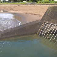 Stormwater Outlet Castor Bay Beach, King Tide 17.11.16