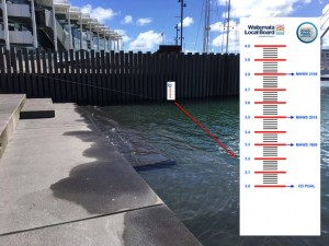 Wynyard Tide Gauge