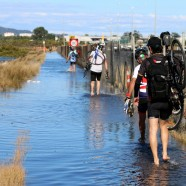 North Western Cycleway, Auckland King Tide 01022014