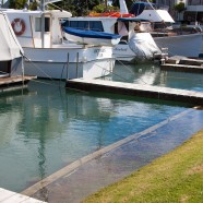 Milford Marina, Auckland King Tide, 01022014