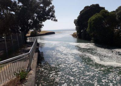 Taiaotea Stream, Browns Bay Beach