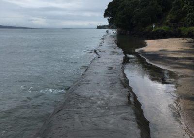 Murrays Bay Walkway, King Tide, 16.11.16
