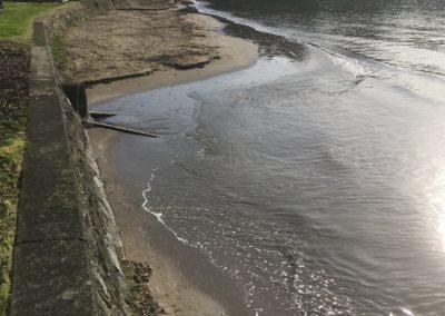 Browns Bay, King Tide, 1.9.19
