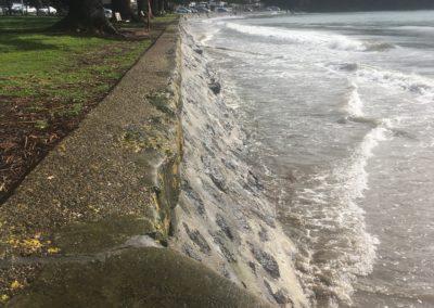 Browns Bay, King Tide 30.9.19