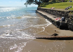 "Sea Wall at Narrow Neck Beach, Auckland – an example of ""Hard Engineering"". Photo: Stephen McLuckie"